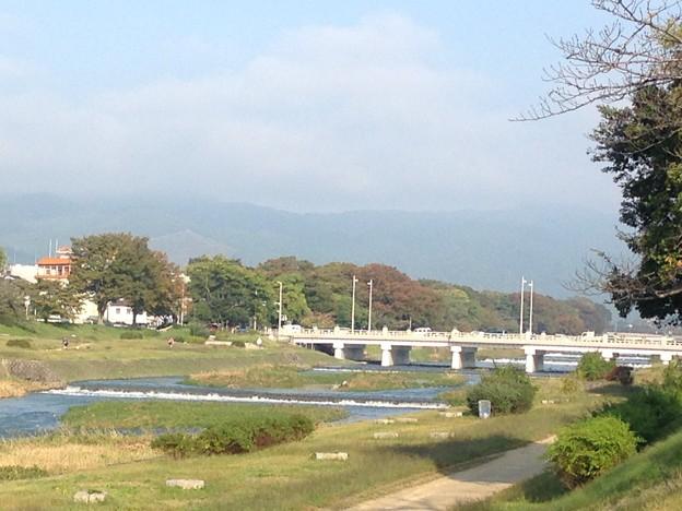 写真: 今朝の賀茂川