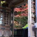 浄土院の紅葉景色
