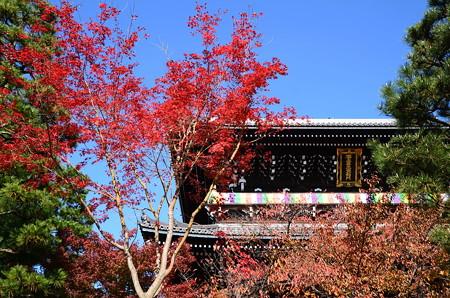 山門を染める紅葉と桜もみじ