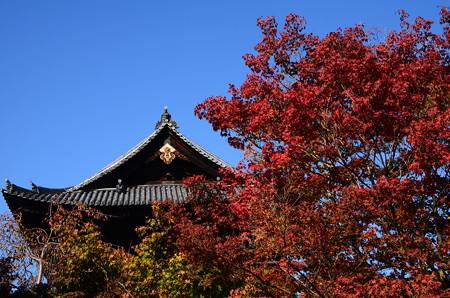 山門を彩る紅葉