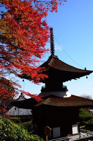 多宝塔を彩る紅葉