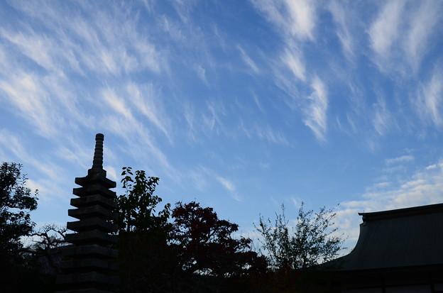 三秀院の秋空
