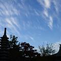 写真: 三秀院の秋空