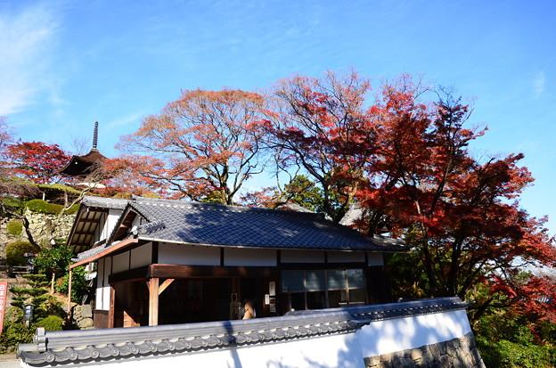 多宝塔と休憩所を彩る紅葉