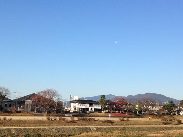 冬の朝の半月