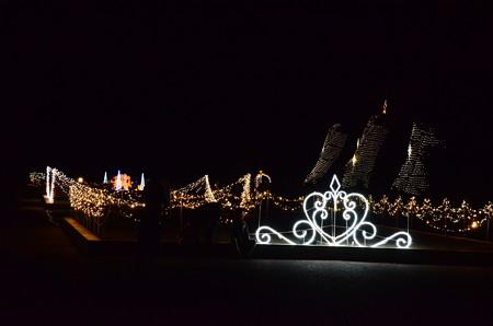 植物園のクリスマスイルミネーション
