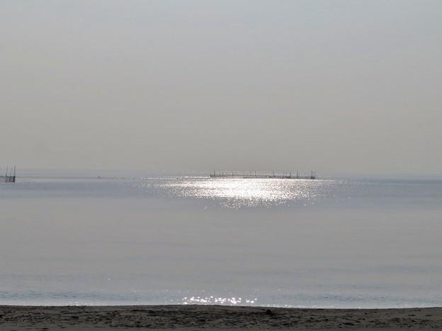 海面が輝く別府湾_1640