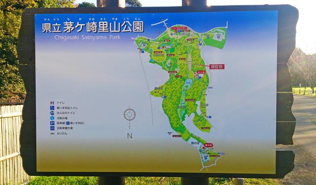 茅ヶ崎里山公園 地図