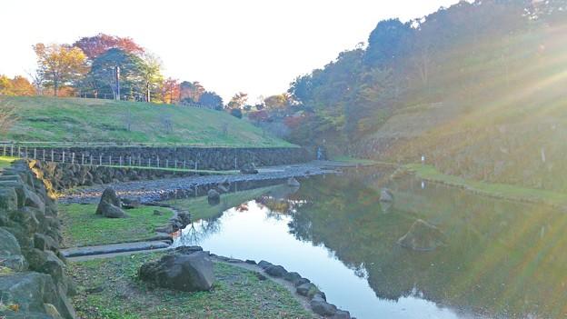 茅ヶ崎里山公園 池