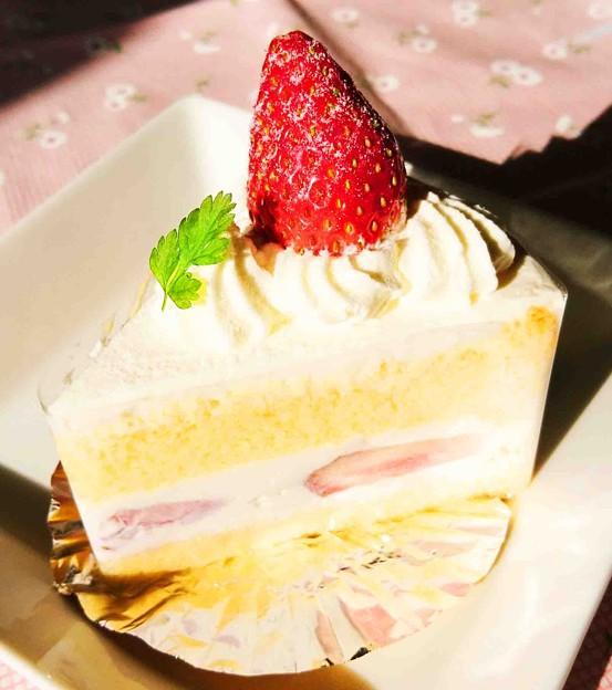 クローバークローバー ショートケーキ
