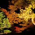 Photos: 三方石観世音ライトアップ2