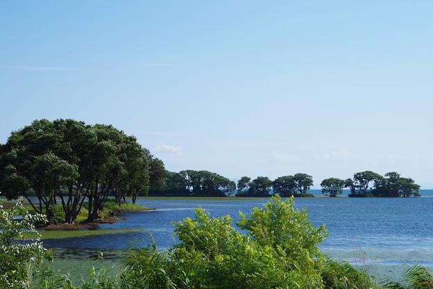 Photos: 初秋の琵琶湖