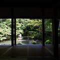 Photos: 蓮華寺庭園