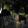 Photos: 松尾寺2