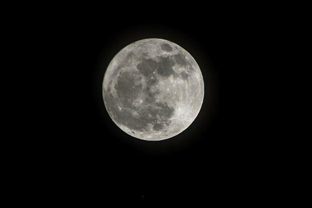 今宵はちょっぴり大きなお月様