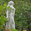 写真: 171005_山梨県立フラワーセンター「ハイジの村」_女神像_F171005G2266_MZD60M_X8Ss