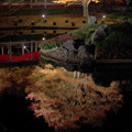 Photos: 171128_伊豆市・修善寺町・虹の郷_ライトアップ紅葉風景_F171128G3114_MZD12ZP_X8Ss