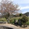 Photos: saigoku18-34