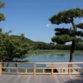 写真: 大覚寺からの大沢の池