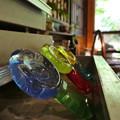 写真: ガラス作品の展示を見に行ってきた時の写真です