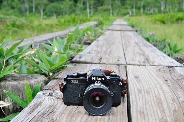 木道とカメラ