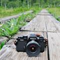 写真: 木道とカメラ