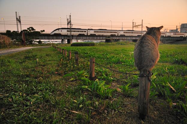 Photos: お見送り