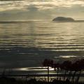 写真: 竹生島