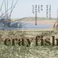 Photos: 01928 AVE写真illus.詩N1937 1608 No.38