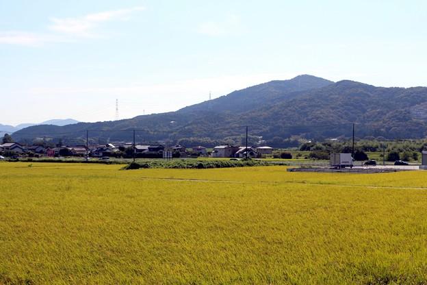 田園風景と吉祥山