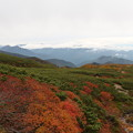 写真: 雲の中北アルプス穂高連峰と紅葉