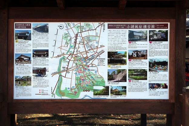 Photos: 「信州小諸・小諸城址懐古園」案内図