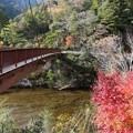 写真: 養乙女橋吊り橋