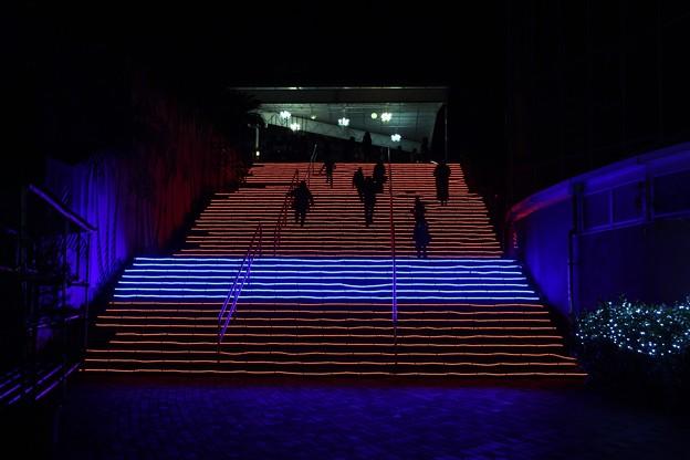 七色イルミネーションの階段