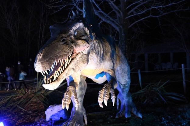 Photos: 恐竜のライトアップ
