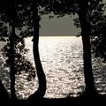 写真: 夕方の湖畔