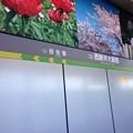 Photos: 西新井大師西駅 Nishiaraidaishi-nishi Sta.
