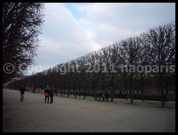 写真: P2650685