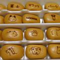 写真: 富士サファリパークまんじゅう。