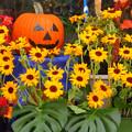 Photos: かぼちゃ君も華やかに。