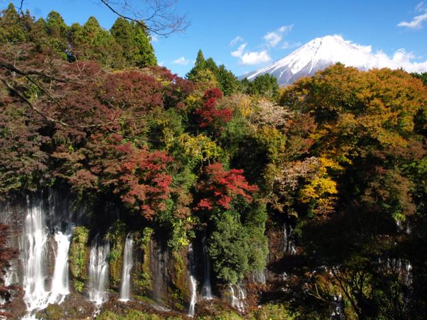 白糸の滝も紅になり。