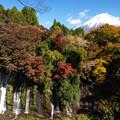 写真: 白糸の滝も紅になり。