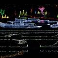 写真: 水辺を飾る光たち。