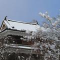 写真: 上田の櫓と雪の華。