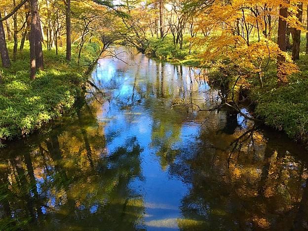 川は秋色♪