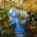 写真: 川は秋色♪
