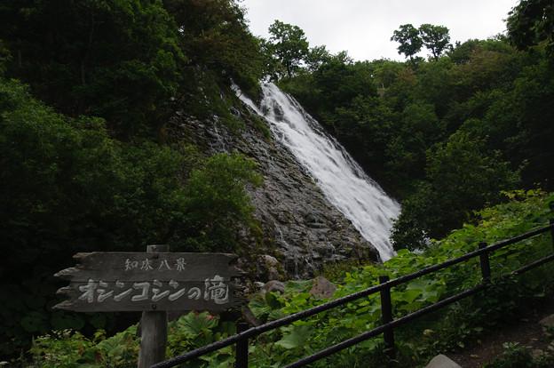 Photos: オシンコシンの滝@2013北海道旅行最終日