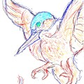 カワセミの素描