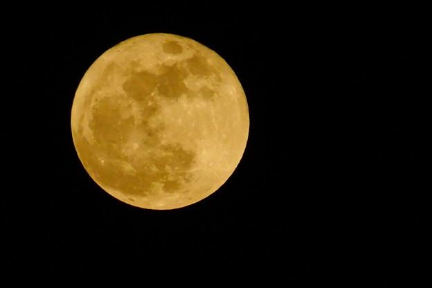 写真: 黄金の月
