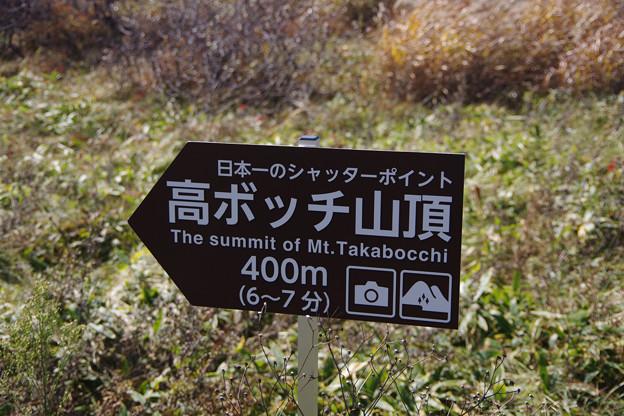 日本一のシャッターポイント間違いなし